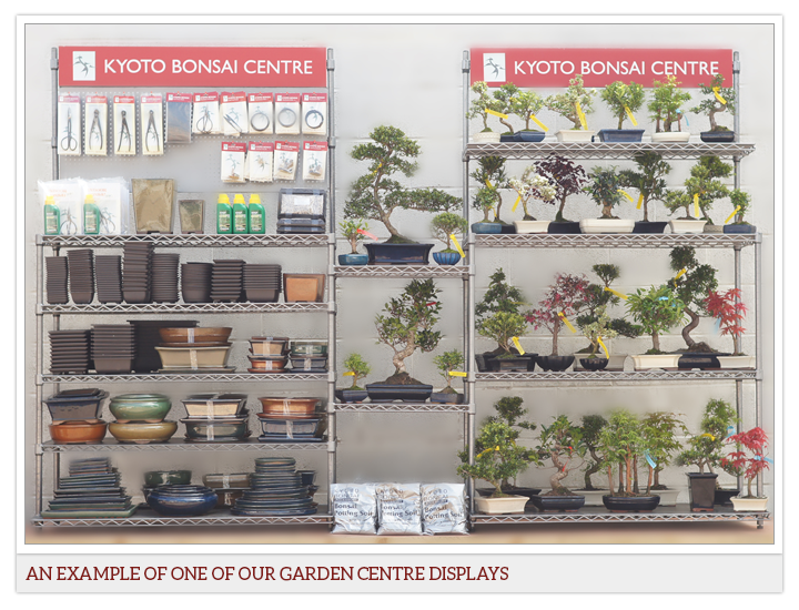 Wholesale bonsai garden centre supplier uk